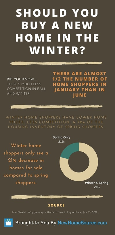 Buy Homes In Winter infographic